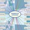 Интеллект-карта. 34 способа рекламы клиники